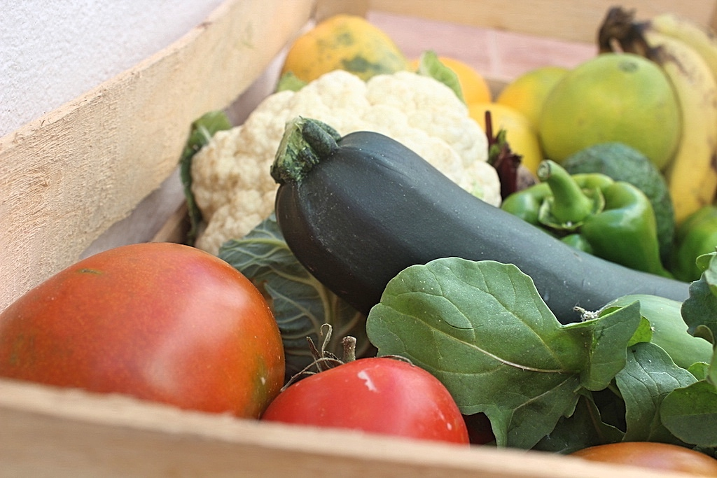 Gemüse Fuerteventura
